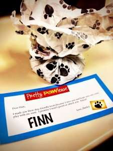 Finn's Doggy-Doodle Package