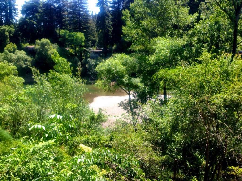 Our view of the Russian River from the balcony